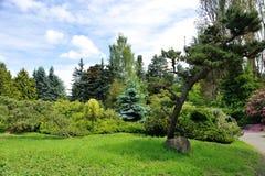 Giardino di Kubota, Seattle Fotografia Stock Libera da Diritti