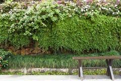 Giardino di legno dell'annata e della sedia Immagine Stock Libera da Diritti