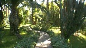 Giardino di Majorelle Marrakesh archivi video