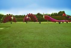 Giardino di miracolo nel Dubai Fotografia Stock