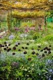 Giardino dei fiori Immagine Stock Libera da Diritti