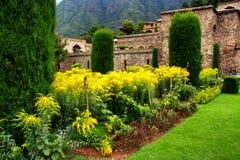 Giardino di Mughal a Srinagar Immagini Stock