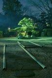 Giardino di notte Immagine Stock