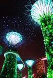 Giardino di notte dalla baia tree3 Fotografia Stock