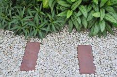 Giardino di pietra Fotografia Stock Libera da Diritti