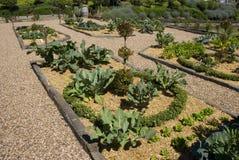 Giardino di Potager Immagini Stock Libere da Diritti