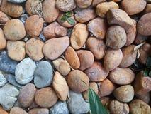 Giardino di rocce Fotografia Stock Libera da Diritti