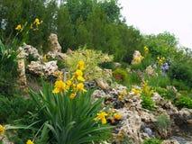 Giardino di rocce Fotografie Stock