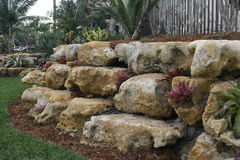 Giardino di roccia Immagine Stock