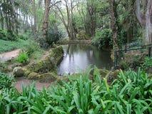 Giardino di Sintra vicino al palazzo famoso di Pena in Sintra, Portogallo fotografie stock
