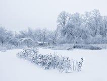 Giardino di Snowy Fotografia Stock
