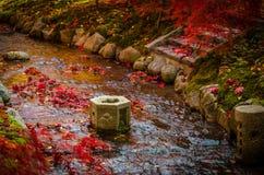 Giardino di stile giapponese Fotografia Stock Libera da Diritti
