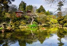 Giardino di tè giapponese Fotografie Stock