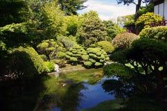 Giardino di tè giapponese Fotografia Stock