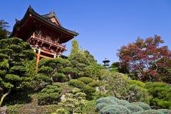 Giardino di tè giapponese Immagini Stock