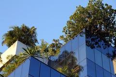 Giardino di tetto Immagine Stock