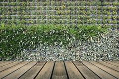 Fiorisce la parete verticale del giardino fotografia stock - Giardino verticale madrid ...