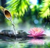 Giardino di zen con le pietre nere e waterlily