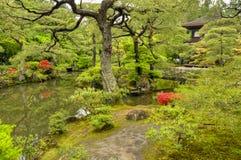 Giardino di zen, tempio di Ginkakuji, Kyoto Fotografia Stock