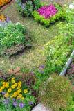 In giardino domestico immagine stock libera da diritti