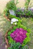 In giardino domestico fotografia stock libera da diritti