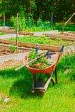Giardino domestico Immagini Stock