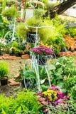 In giardino domestico fotografie stock
