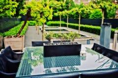 Giardino domestico della sorgente immagine stock