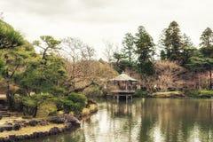 Giardino e carpe a specchi giapponesi nello stagno Immagini Stock