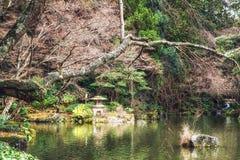 Giardino e carpe a specchi giapponesi nello stagno Fotografia Stock