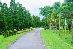 Giardino e strada nel parco Immagini Stock