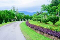 Giardino e strada nel parco Fotografia Stock Libera da Diritti