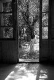 Giardino in estate Fotografie Stock