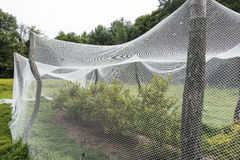 Giardino fabric_3 Fotografia Stock Libera da Diritti