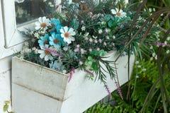 Giardino, fine su, fiore immagine stock libera da diritti