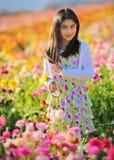 Giardino floreale immagine stock