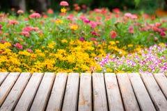 Giardino floreale Fotografie Stock Libere da Diritti