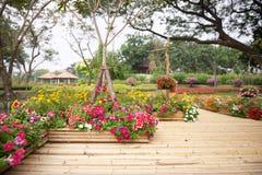 Giardino floreale bello con il percorso di bambù fotografie stock libere da diritti