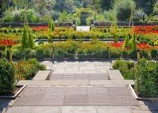 Giardino floreale con i percorsi Fotografia Stock