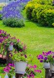 Giardino floreale domestico accogliente di idea e di concetto su estate immagini stock