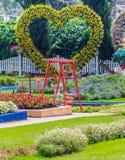 Giardino floreale domestico accogliente di idea e di concetto su estate immagine stock libera da diritti