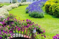 Giardino floreale domestico accogliente di idea e di concetto su estate fotografia stock libera da diritti