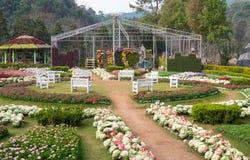 Giardino floreale in montagna di Angkhang di doi, Chaingmai, Tailandia Fotografia Stock