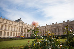 Giardino floreale Versailles Fotografia Stock Libera da Diritti
