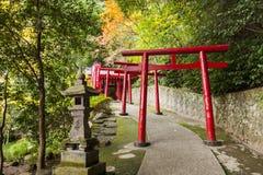 Giardino giapponese Immagini Stock Libere da Diritti