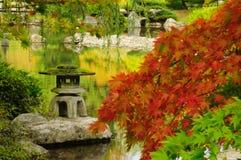 Giardino giapponese in autunno a Seattle Fotografia Stock Libera da Diritti