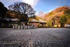 Giardino giapponese in autunno a Yokohama, Giappone Immagine Stock Libera da Diritti
