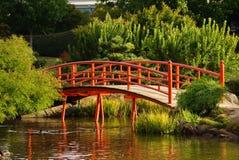 Giardino giapponese con il primo piano del ponte Immagine Stock Libera da Diritti