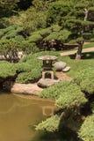 Giardino giapponese con uno stagno di koi Immagini Stock Libere da Diritti