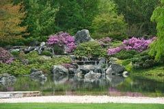 Giardino giapponese di fioritura Fotografia Stock Libera da Diritti